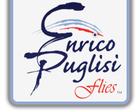 logo-enrico-puglisi.png