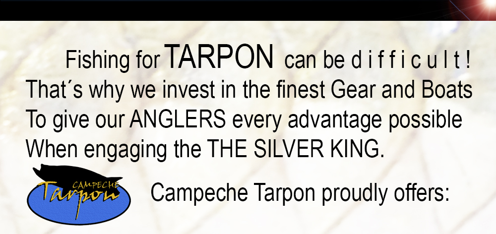 fishing-for-tarpon.jpg